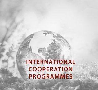 INGLISE_rahvusvahelised haridusprogrammid